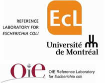 OIE Reference Laboratory for E. coli
